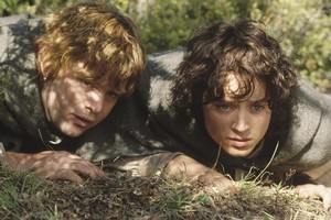 Sean Astin and Elijah Wood played hobbits in the  Lord of the Rings  trilogy. Photo / Supplied