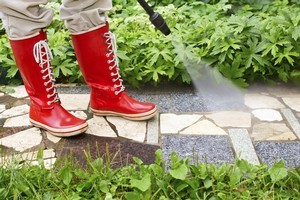 Instead of a garden path with shrubs, try planting a path with herbs and vegetables. Photo / Thinkstock