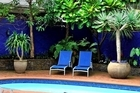The right plants can make a real difference to your pool area. Linear-type plants work best if there is limited space. Photo / New Zealand Herald