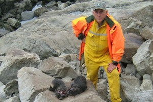 South Marlborough biodiversity manager Phil Bradfield with two of the seals. Photo / Supplied