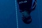Freediver William Trubridge. Photo / Igor Liberti