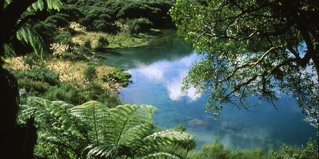 The Lake Waikaremoana Great Walk skirts a series of stunning, pristine bays fringed with brooding forest. Photo / Paul Rush