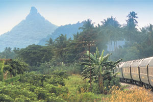 The Eastern and Oriental Express deserves its reputation for great views. Photo / Supplied