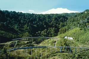 Travelling over the Hapua Whenua viaduct. Photo / Supplied