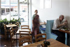 The Blue Bird Vegetarian Cafe on Dominion Road. Photo / Herald on Sunday