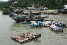 Every kind of vessel imaginable floats on the waters off Tai O fishing village. Photo / Jim Eagles