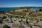 Rotoroa Island in the Hauraki Gulf was once used for drug and alcohol rehabilitation. Photo / Richard Robinson