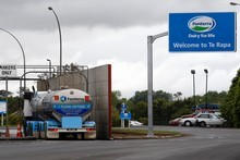 Fonterra is seeking rivals' milk powder for its online auctions. Photo / Sarah Ivey