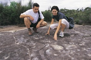 Aboriginal carvings can be found in Ku-ring-gai Chase National Park. Photo / Tony Yeates/Tourism NSW