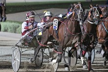 Stunin Cullen (13) was superb winning the Hunter Cup last month. Photo / Harness Racing Victoria