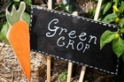 Plant labels are a good way to keep track of the new crops popping up in the garden. Photo / Richard Robinson