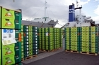 Zespri says Japan is its best-performing market. Photo / Bay of Plenty Times