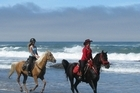 Horse trekking near Fort Bragg. Photo / Supplied