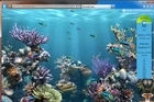 Microsoft's fish tank test is a cool tool to show off Internet Explorer 9's hardware acceleration at work. Photo / Supplied