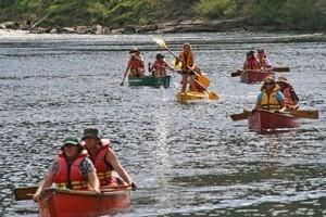 Kayaking the Whanganui River. Photo / Liz French