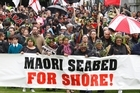 The foreshore and seabed hikoi, of about 300 people, marches on to Parliament grounds yesterday. Photo / Mark Mitchell