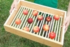 Justin's boxes promote air circulation, which will keep the apples in good shape for longer. Photo / Steven McNicholl