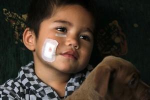 Three-year-old Oracle Brampton with his puppy Kush. Photo / Janna Dixon