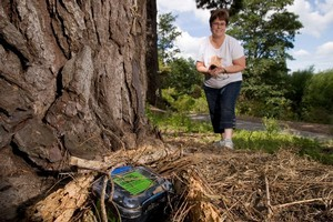 Linda Wallace goes hunting with her GPS. Photo / Stephen Barker