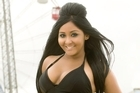 Snooki's the kind of natural disaster stressed viewers can cope with. Photo / Scott Gries/Picture Group