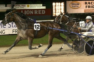 Rayon, driven by Tony Herlihy, leads the field. Photo / Greg Bowker