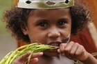 A junior member of the Wagawaga dance party in Papua New Guinea. Photo / Liz Light