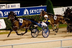 Smoken Up (6) was too good for Mr Feelgood (outer)  last Friday but they are both big chances tonight. Photo / Dean Purcell