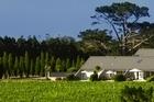 Peace and quiet at Takatu Lodge and Vineyard, Matakana. Photo / Supplied