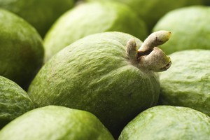 The feijoa originated from South America's east coast, but New Zealand is now the largest producer of the fruit. Photo / Thinkstock