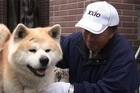 When the tsunami hit Japan's northeast coast, many people turned up at evacuation centres with their beloved pets in-tow.