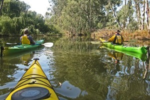 A meander down the Murray proves the perfect antidote to waterskiing lessons. Photo / Rob McFarland