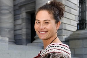 MP Louisa Wall. Photo / Mark Mitchell