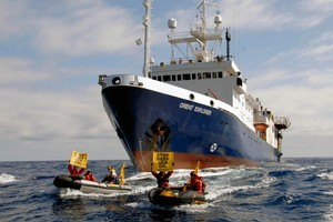 The seismic survey vessel Orient Explorer bears down on Greenpeace inflatables attempting to force the ship off course. Photo / Greenpeace
