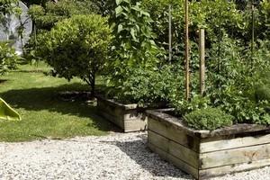 Raised garden beds. Photo / Listener