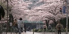 Watch: Japan recovers - one month on