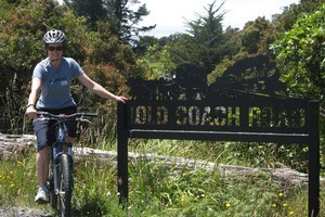 Diana Clement cycling the Old Coach Road. Photo / Supplied