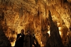 Tourism Holdings' assets include Waitomo Glowworm Caves. Directors recommend shareholders wait for the independent appraisal report. Photo