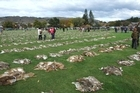 The Great Easter Bunny Hunt. Photo / Otago Daily Times