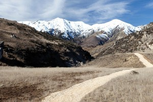 Book cover of Day Walks of New Zealand: Canterbury and Kaikoura by Mark Pickering. Photo / Supplied