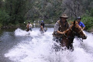 Michael Watson, whose Howqua Valley operation offers early settler-style treks through the bush, leads us through the fastest-flowing river in Victoria. Photo / Kate Johns and Steven Pilcher