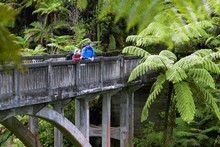 The concrete and steel span of the Bridge to Nowhere leads to rough country - and little else. Photo / Tourism Ruapehu