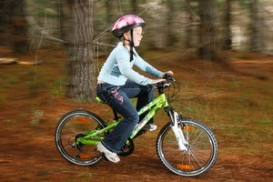 The forest has bike tracks suitable for all ages. Photo / Greg Bowker