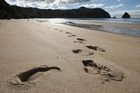 New Chums Beach in the Coromandel. Photo / Alan Gibson