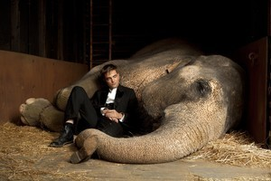 Robert Pattinson in Water For Elephants. Photo / Supplied