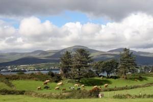 Jillian Godsil has lost at least €1 million after purchasing an Irish country house. Photo / Thinkstock
