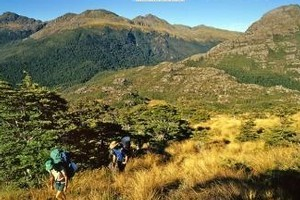 Cover of Classic Tramping in New Zealand by Shaun Barnett and Rob Brown. Photo / Supplied