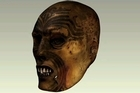 A computer generated image of the Maori head.