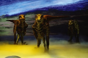 The scale of the robotics behind Walking with Dinosaurs is mind-boggling, with audiences set to be awed by the life-like giants within their reach. Photo / Supplied