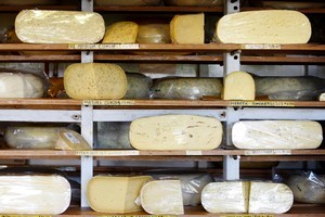 The cheeses at Mercer are award-winning and well worth the detour. Photo / Christine Cornege