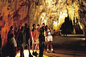 A partial takeover offer was made for Tourism Holdings, owner of Waitomo Glowworm Caves. Photo / File